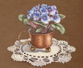 Africian Violets and Copper